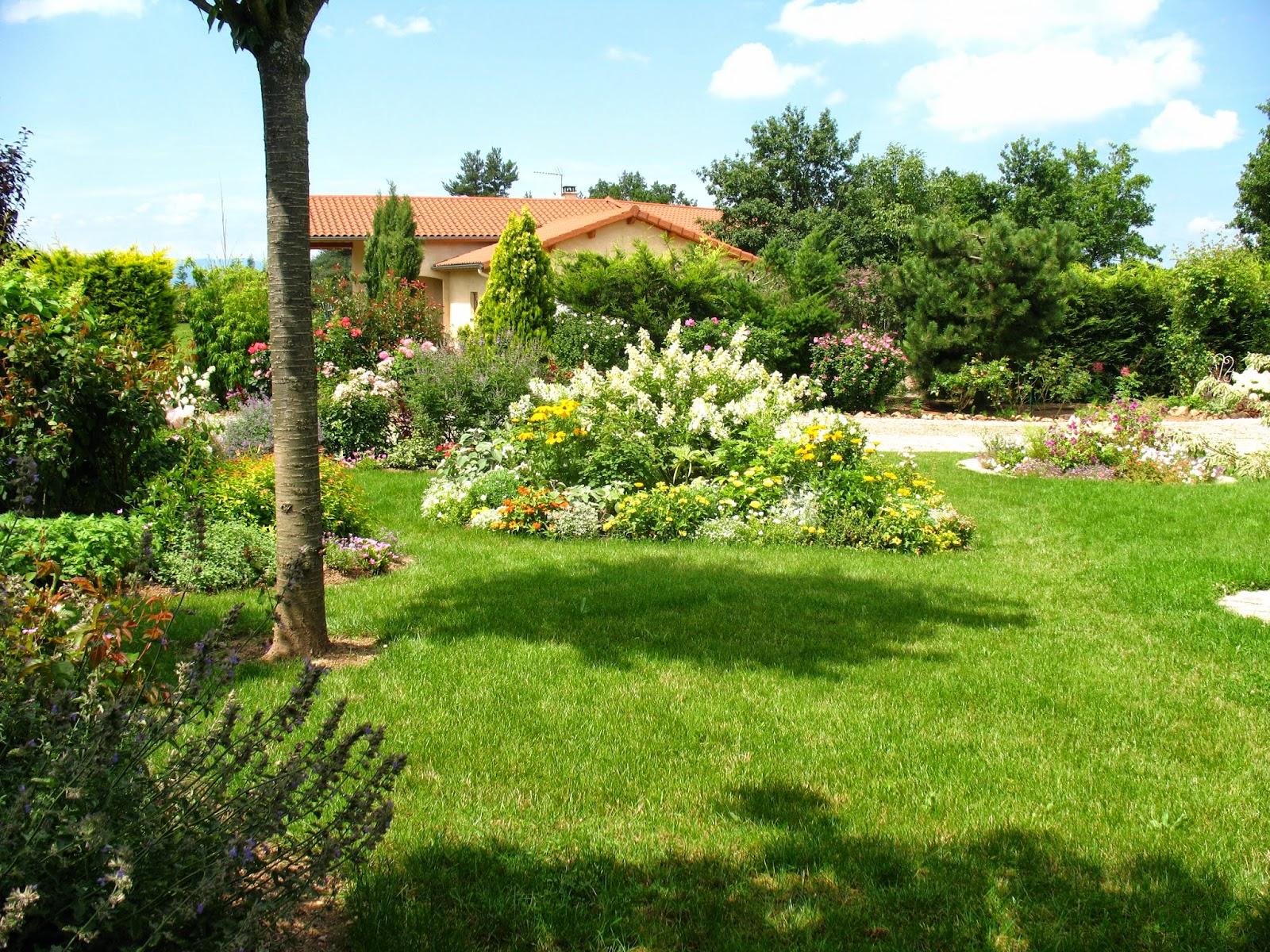 Roses du jardin ch neland cr ation d 39 un massif jaune et blanc for La maison du massif