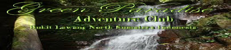 Green Paradise l Tour & Travel l Bukit Lawang Best Offer