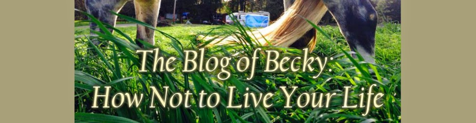The Blog of Becky