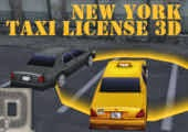 New York Taxi license 3D