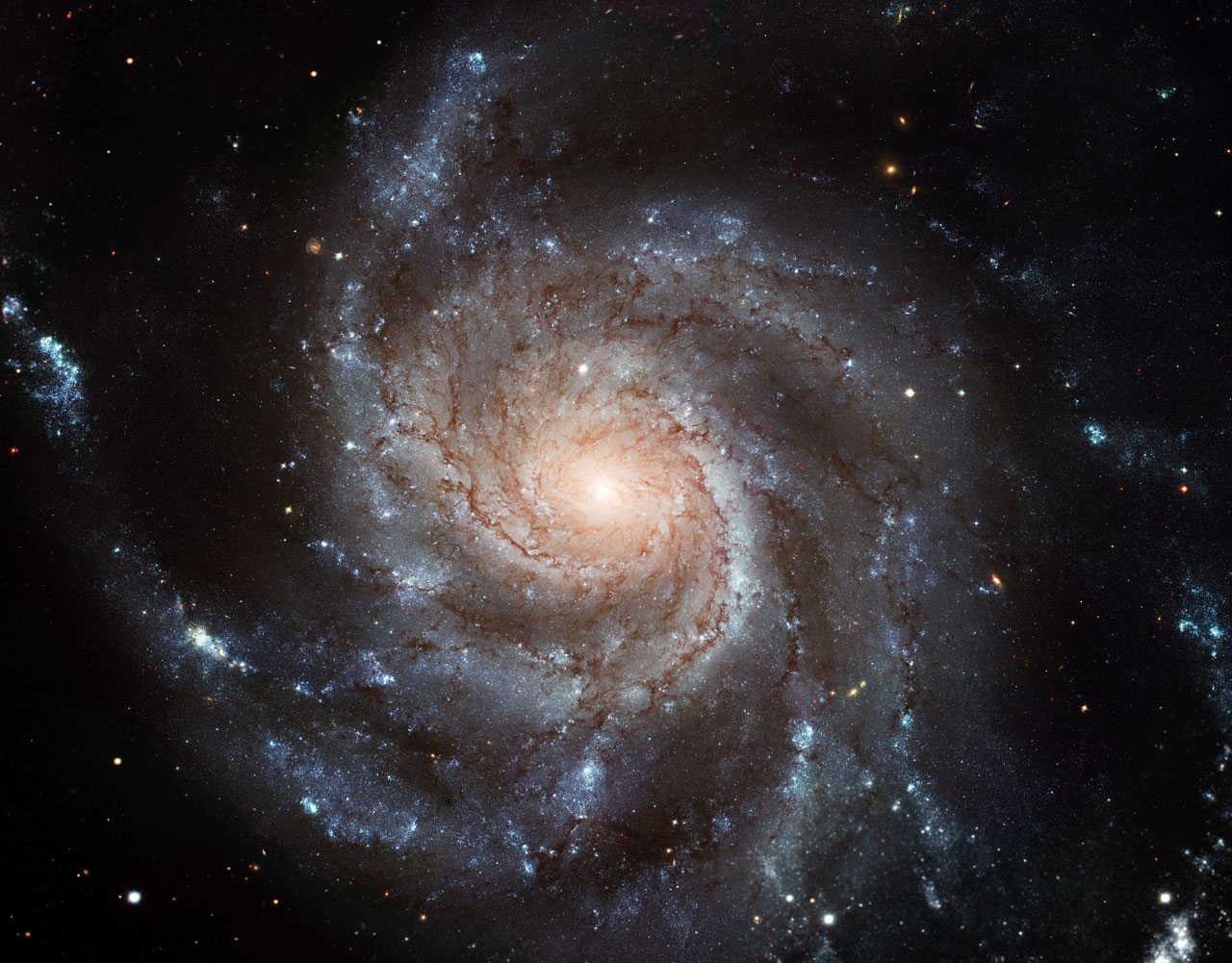 Largest ever galaxy portrait