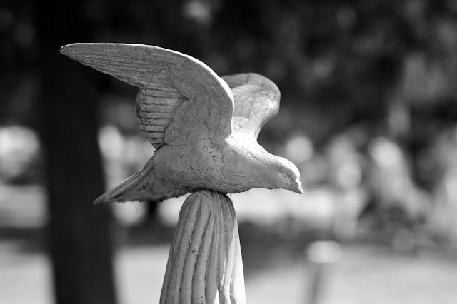 Gunnisonville Cemetery Tour, Lansing Michigan. photo by Tammy Sue Allen.