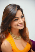 Actress Shilpi Sharma Hot Photo shoot-thumbnail-13