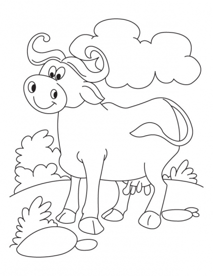 domestic animals coloring pages - photo#12