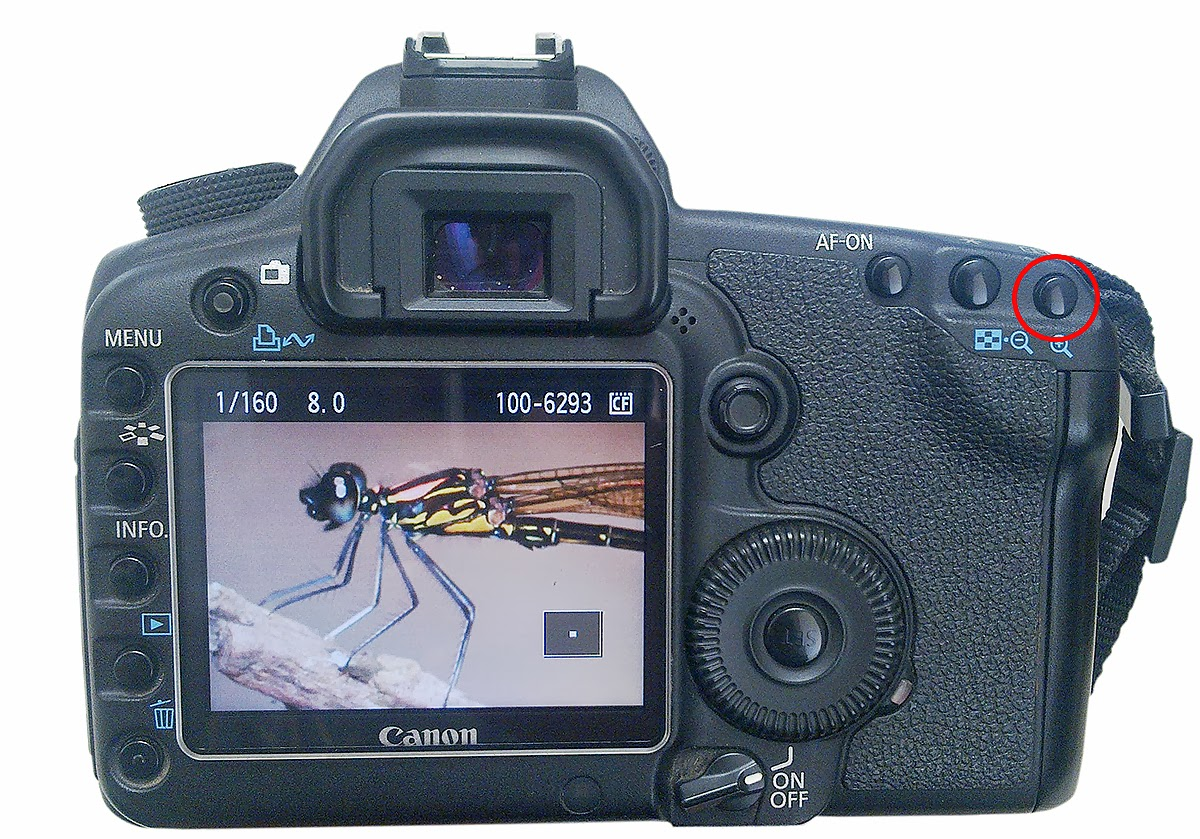zooming lcd panel of dslr camera