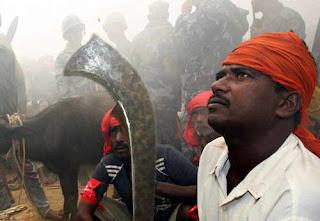 http://3.bp.blogspot.com/-lwGr9rDTNtU/UBgFHEwWjxI/AAAAAAAAJbE/c2_rqsVA3j8/s1600/matanza-animales-nepal-02.jpg