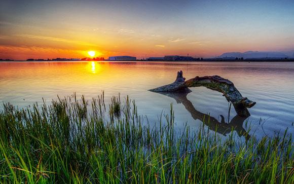 وحش بحيرة لوخ نيس , تحميل صور خلفيات