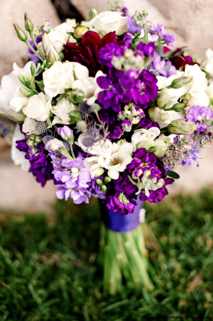 Sea Foam  Purple Sundance Resort Summer Wedding  Utah Florist