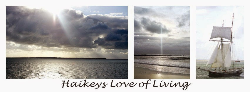 Haikeys Love of Living