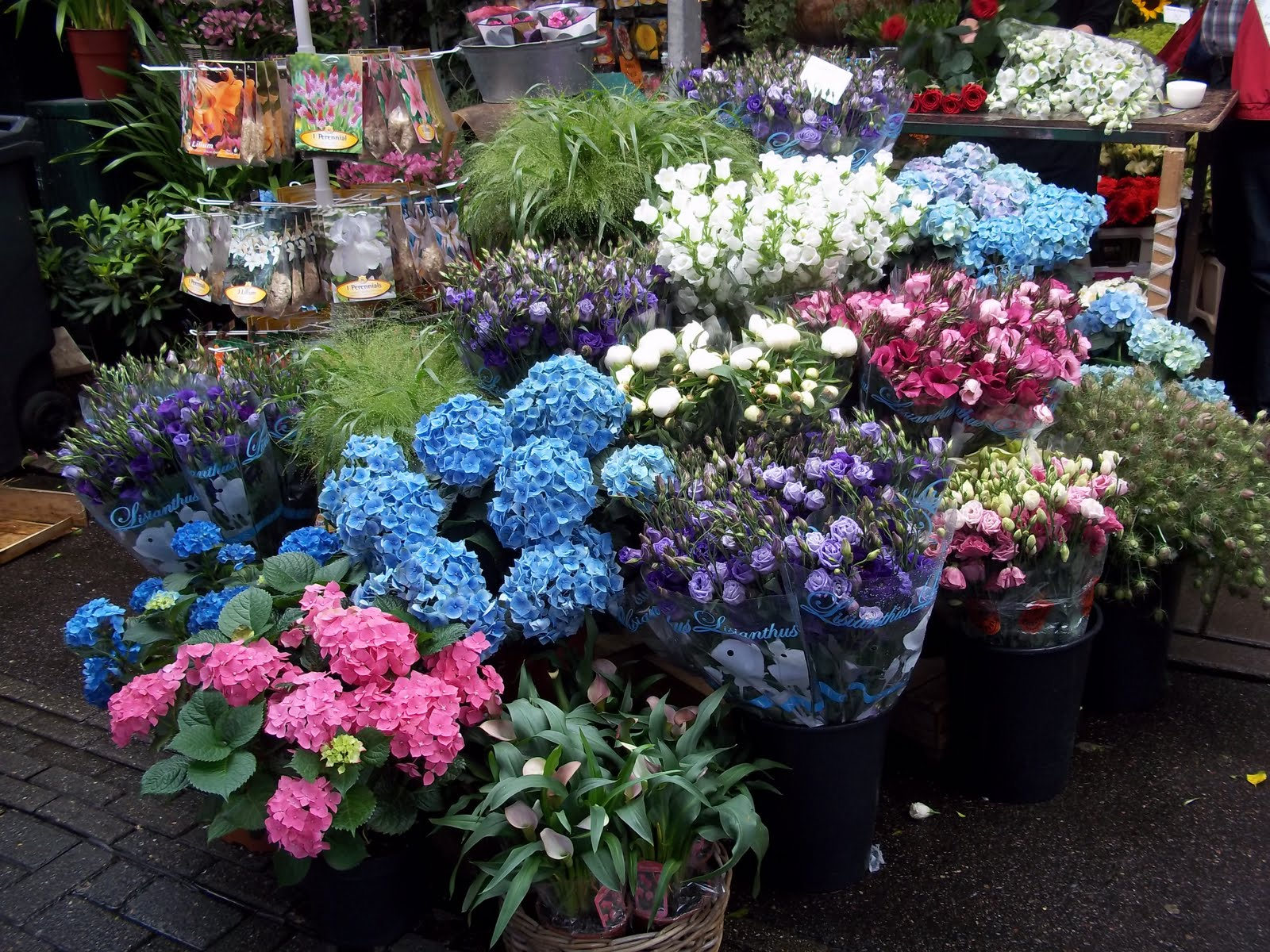 American Homestead Amsterdam Flower Market