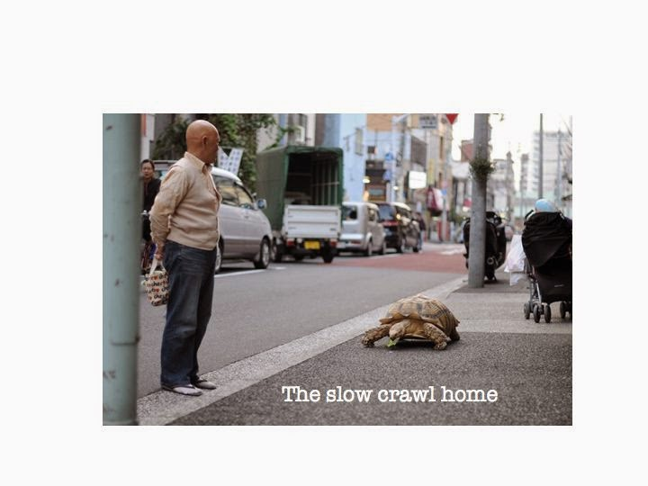 The slow crawl home