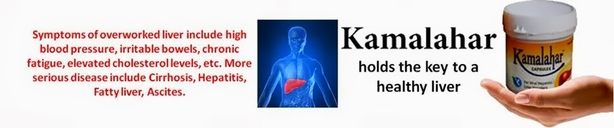 Ayurvedic Treatment of Liver Disorders