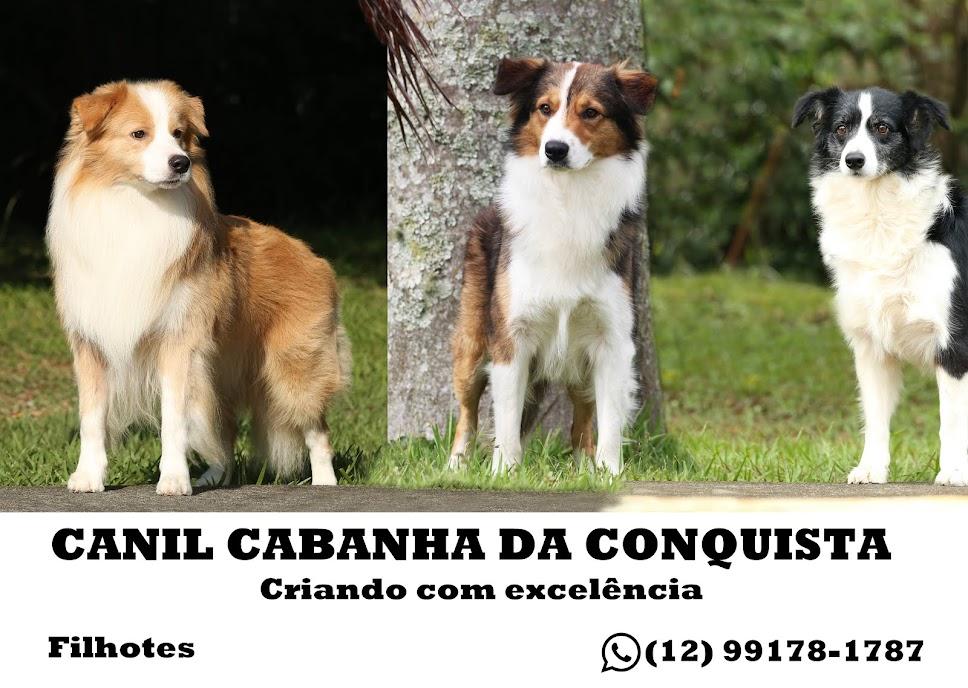 CANIL CABANHA DA CONQUISTA