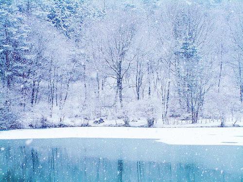Foto Musim salju indah