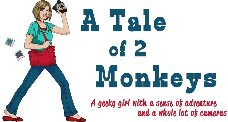 *A Tale of 2 Monkeys*