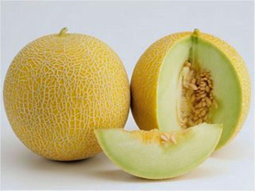 10 Manfaat Buah Melon Berdasarkan Kandungan Gizinya