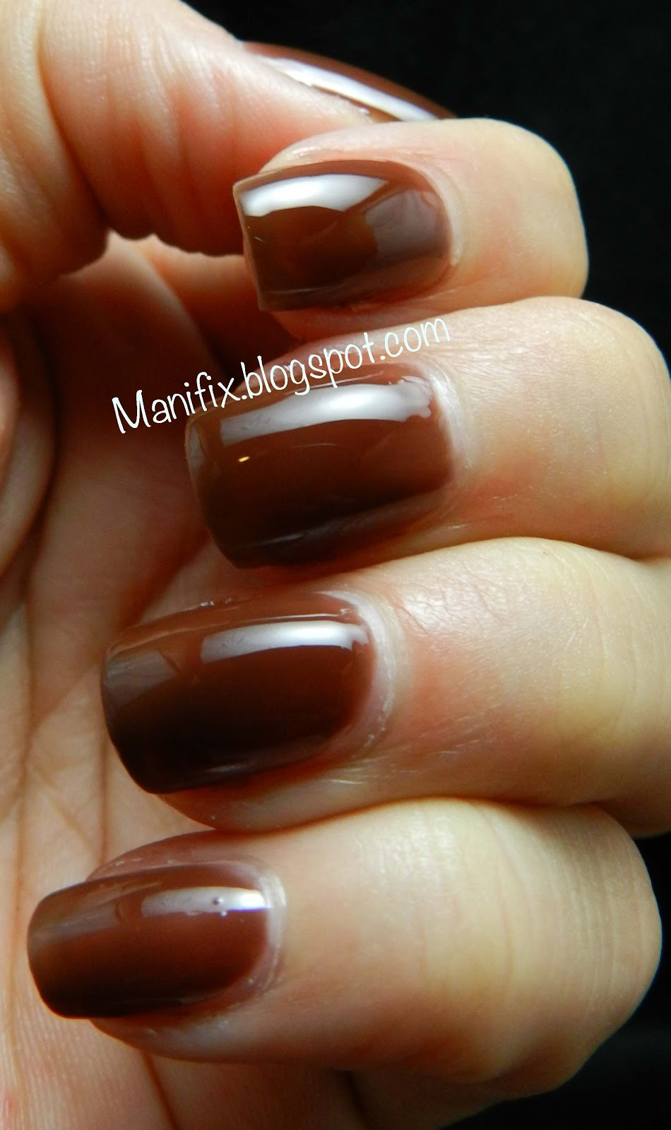 Manifix: Elevation Polish Brown Jelly Trio Swatches and nail art
