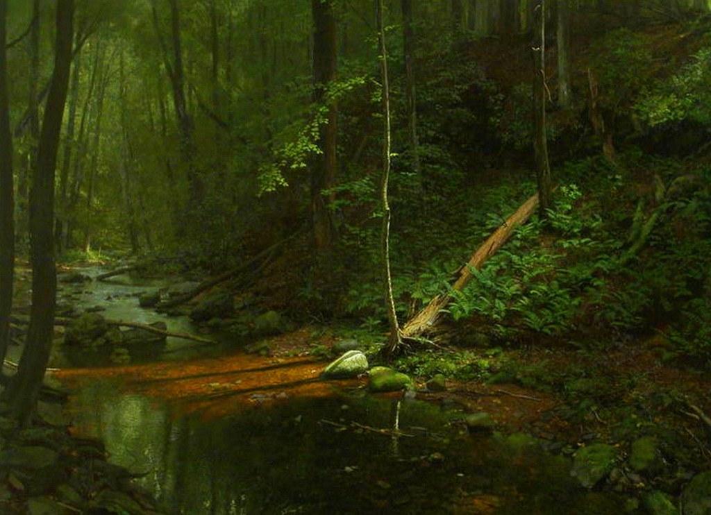 Cuadros selvaticos de nancy depew serie pinturas de - Cuadros de pintura ...