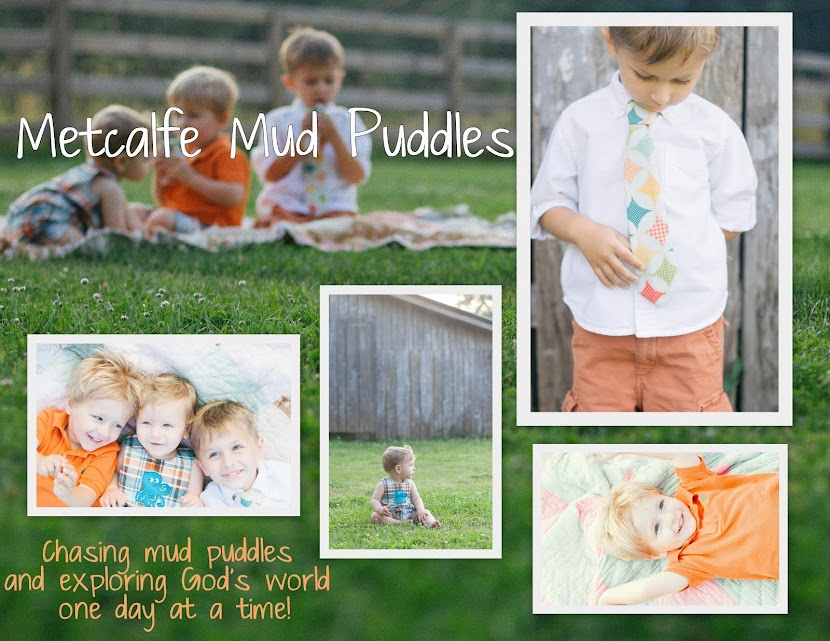 Metcalfe Mud Puddles