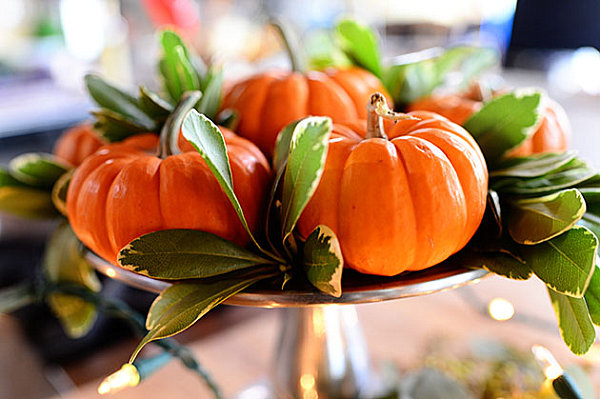 Kensington bliss simple yet beautiful thanksgiving for Simple pumpkin centerpieces