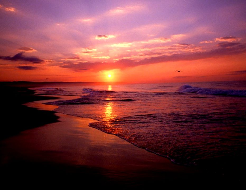 Sunrise Beach Wallpapers   Wallpaper Cave