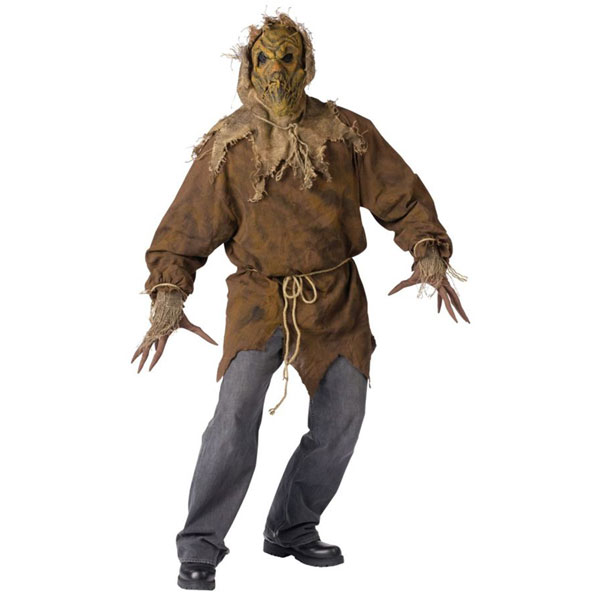 Cool and hip?  sc 1 st  Celtic Pumpkin & CELTIC PUMPKIN: I Wanna Be A Scarecrow