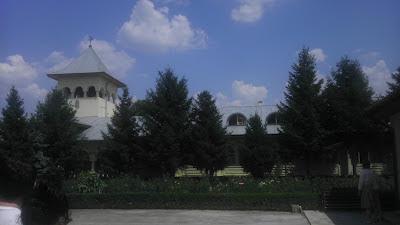 Mănăstirea Vladimirești