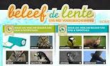 BELEEF DE LENTE