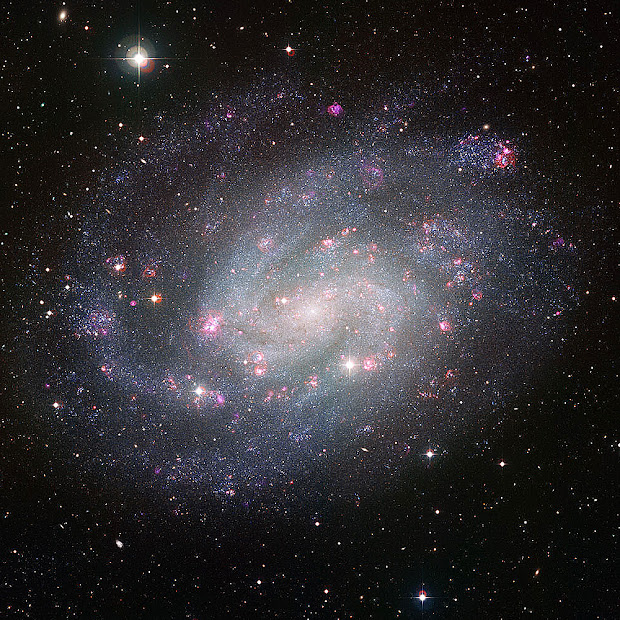 Gorgeous picture of the southern Spiral Galaxy NGC 300