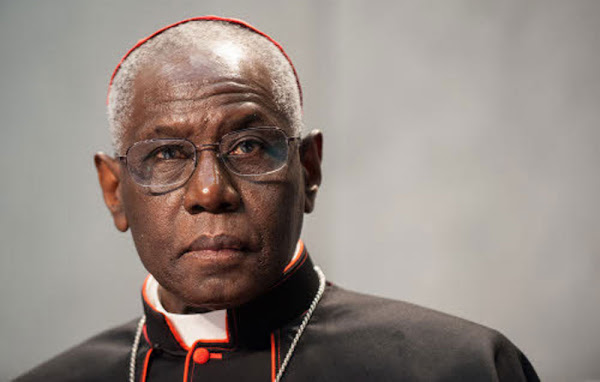 Αφρικανός καρδινάλιος: «Μερικοί έχοντας ως πρόσχημα το Ευαγγέλιο θέλουν να προωθήσουν την πολυπολιτισμικότητα και την μαζική μετανάστευση»