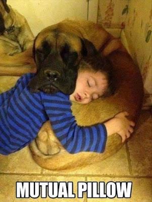 Funny kid and dog
