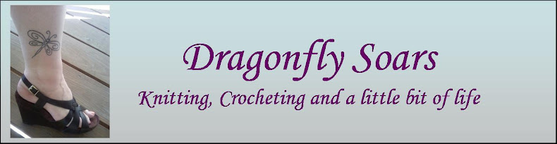 Dragonfly Soars!