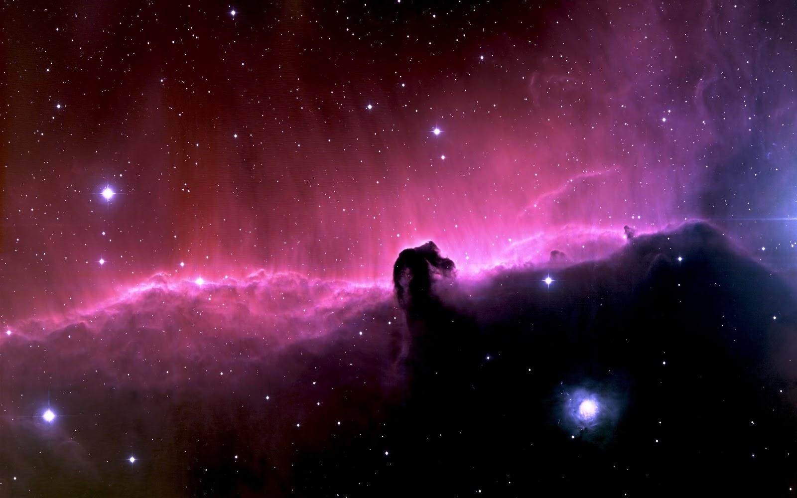 Good   Wallpaper Horse Nebula - Horsehead-Nebula-Wallpaper-HD-03  You Should Have_152118.jpg