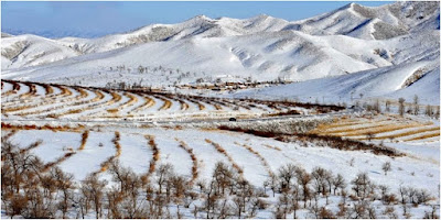 Lima Negara Dengan Suhu Paling Dingin di Dunia