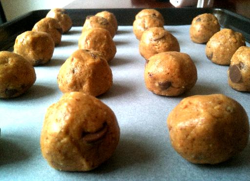 Raw Paleo Chocolate Chip Cookie Dough Truffles