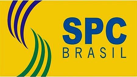 Consultar SPC - Como Consultar SPC SERASA Online