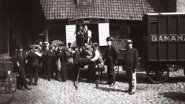 Bananas Noruega 1905