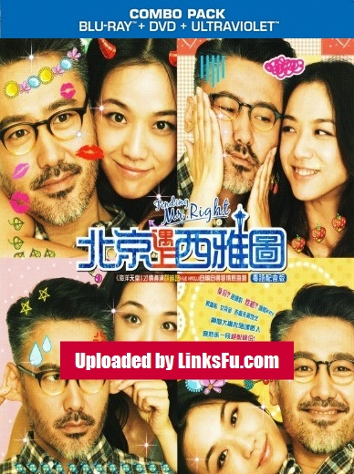 Finding Mr Right (2013) 720p BRRip