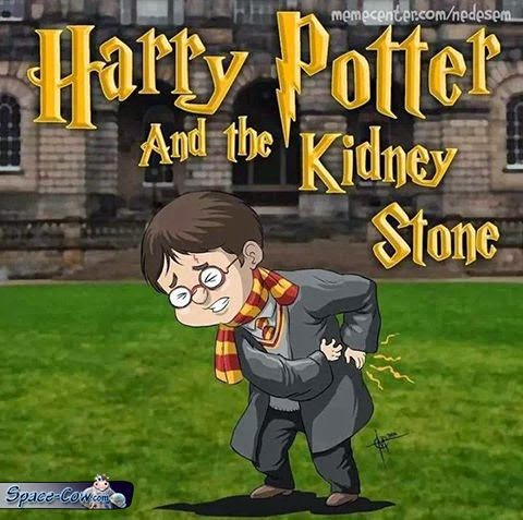 funny Harry Potter stone