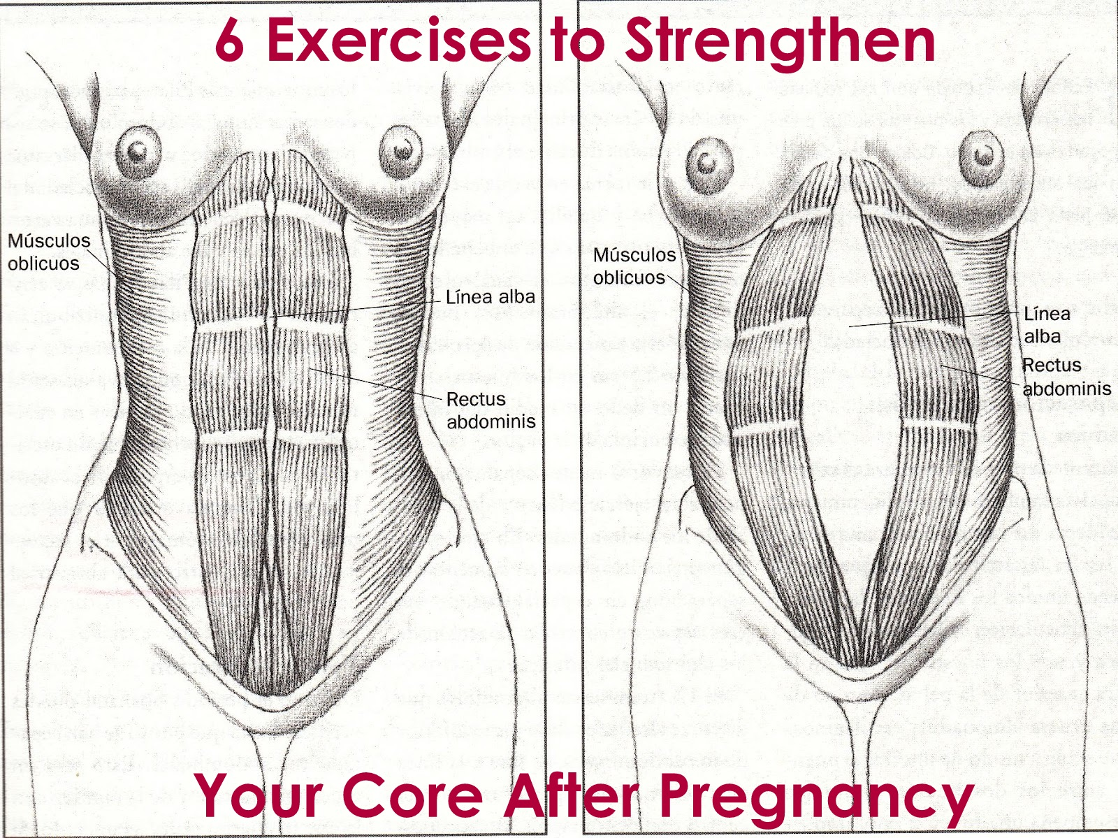 Forum on this topic: How to Strengthen Your Core, how-to-strengthen-your-core/