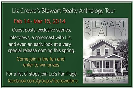 Stewart Reality Anthology Tour