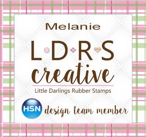 HSN LDRS Design Team