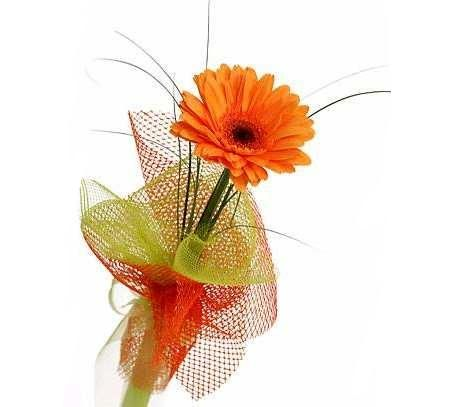 Букет из одного цветка