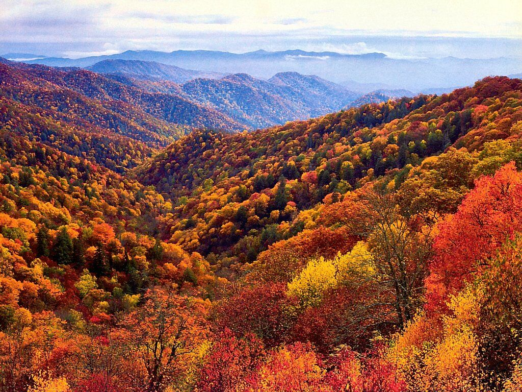 One girl one earth oh the west virginia hills how for West fall