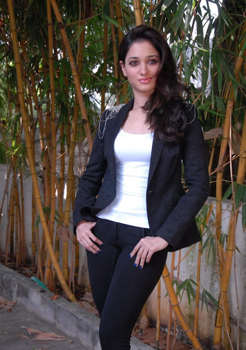 tamanna new hot photoshoot