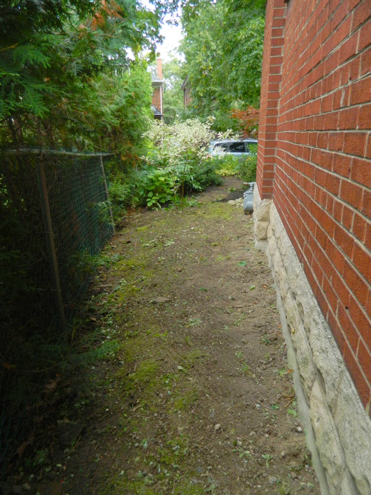 Toronto Mount Pleasant West garden clean up after Paul Jung Gardening Services