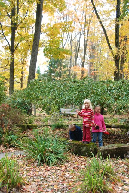 Autumn leaves & kids in the park