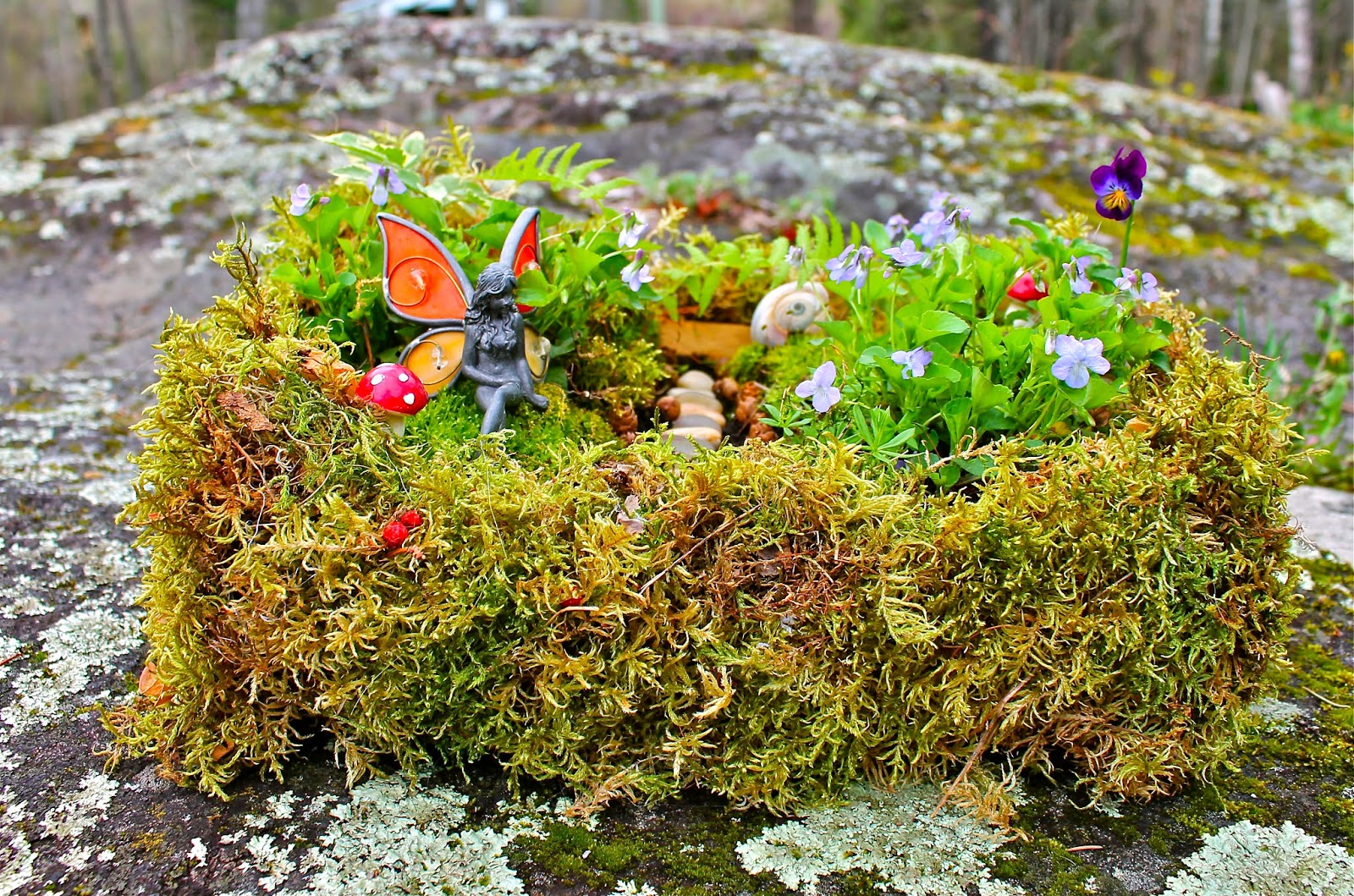 Twig and toadstool create your own fairy garden for Design my own garden