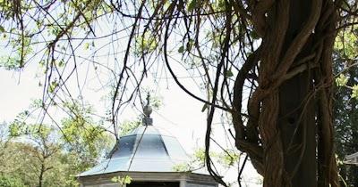 Monika Caban Photography Michigan Wedding Portrait Photographer Fernwood Botanical Garden