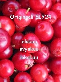 SLY24